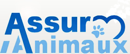 Assurance Animaux : Chiens et Chats